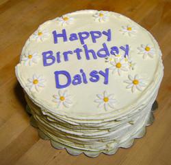 Daisy_edited