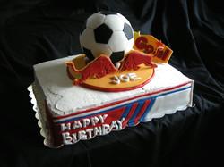 NY Red Bulls Soccer Cake
