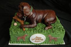 Chocolate Labrador Cake