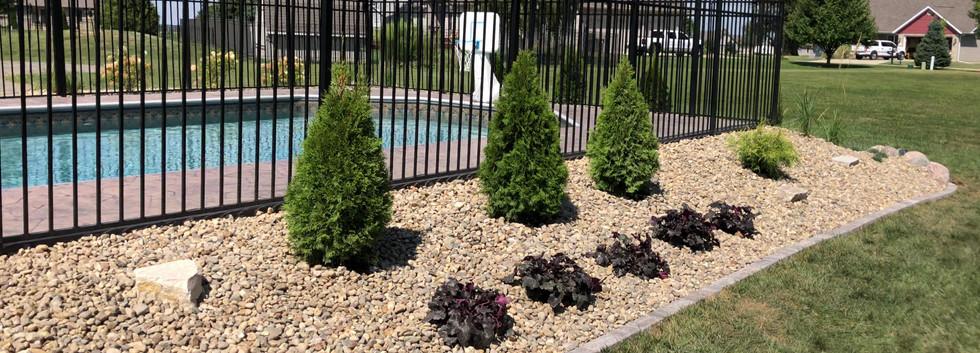 Poolside Landcape Install.MOV