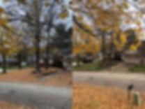 Fall Cleanup 2.jpg