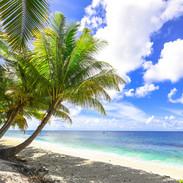 beach-1449767F_edited.jpg