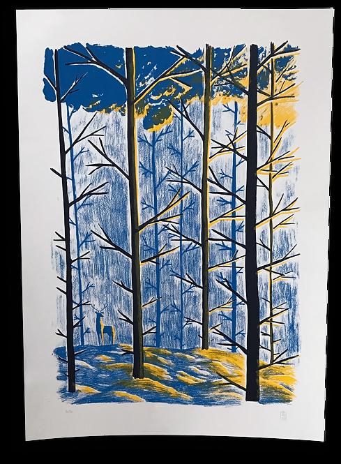 """La Forêt au matin"" Maxime Lombard"