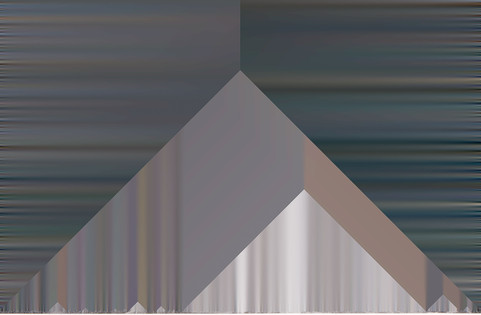 Tri-Xpushed8.jpg