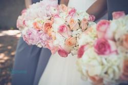 Bias_peach_flowers