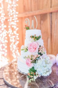 Keela and Blakes Wedding-Reception-0001