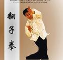 DVD Fanzi quan.jpg