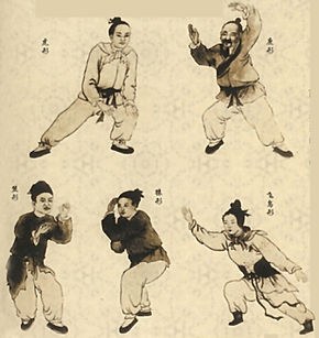 Chinese medicine qigong chadstone