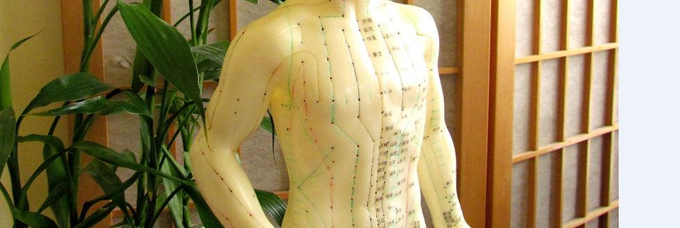 acupuncture melbourne victoria