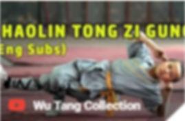 shaolin tongzhi gong.jpg