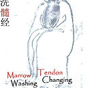 DVD Shaolin Marrow Washing.jpg
