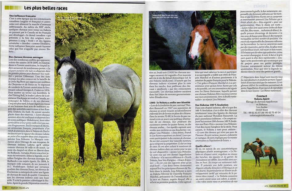 Spécial cheval