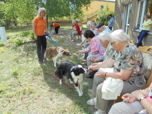 Die Hundeschule zu Besuch