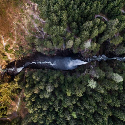 bergbaur-neukirchen-grossvenediger-nationalpark-hohe-tauern-vogelperspektive-wald-min.jpg
