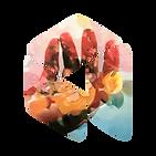APROPOS_A_Logo_TN.png