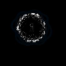 Hometone_Logo_Transparent.png