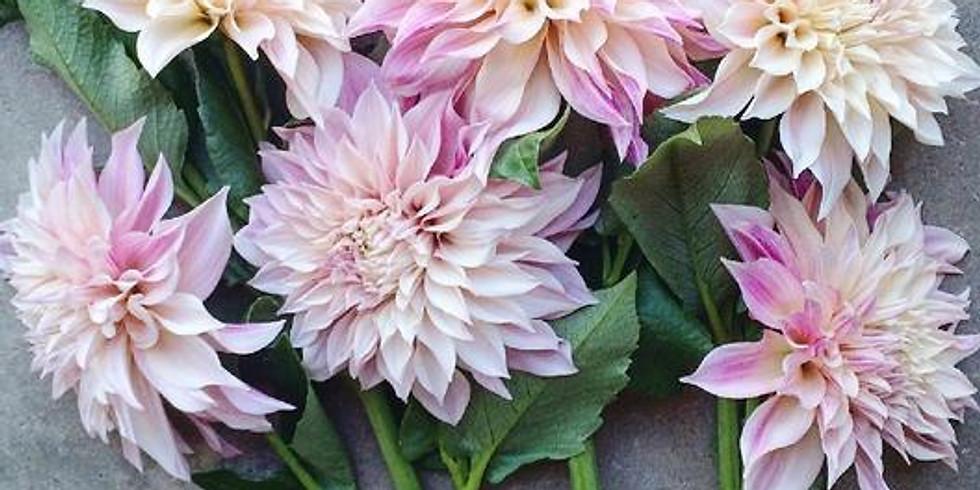 Looking Back at a Vintage Flower