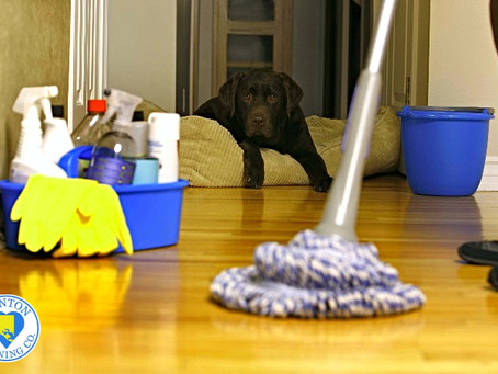 Your House Cleaning Checklist: What to Do Daily, Weekly, Monthly, and Seasonal