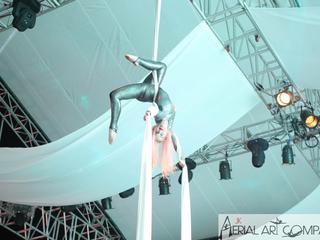 aerial-13.png