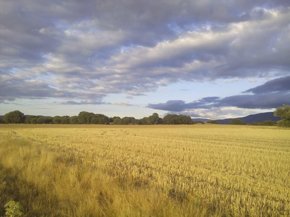 La Calzada o Camino de Choriceros