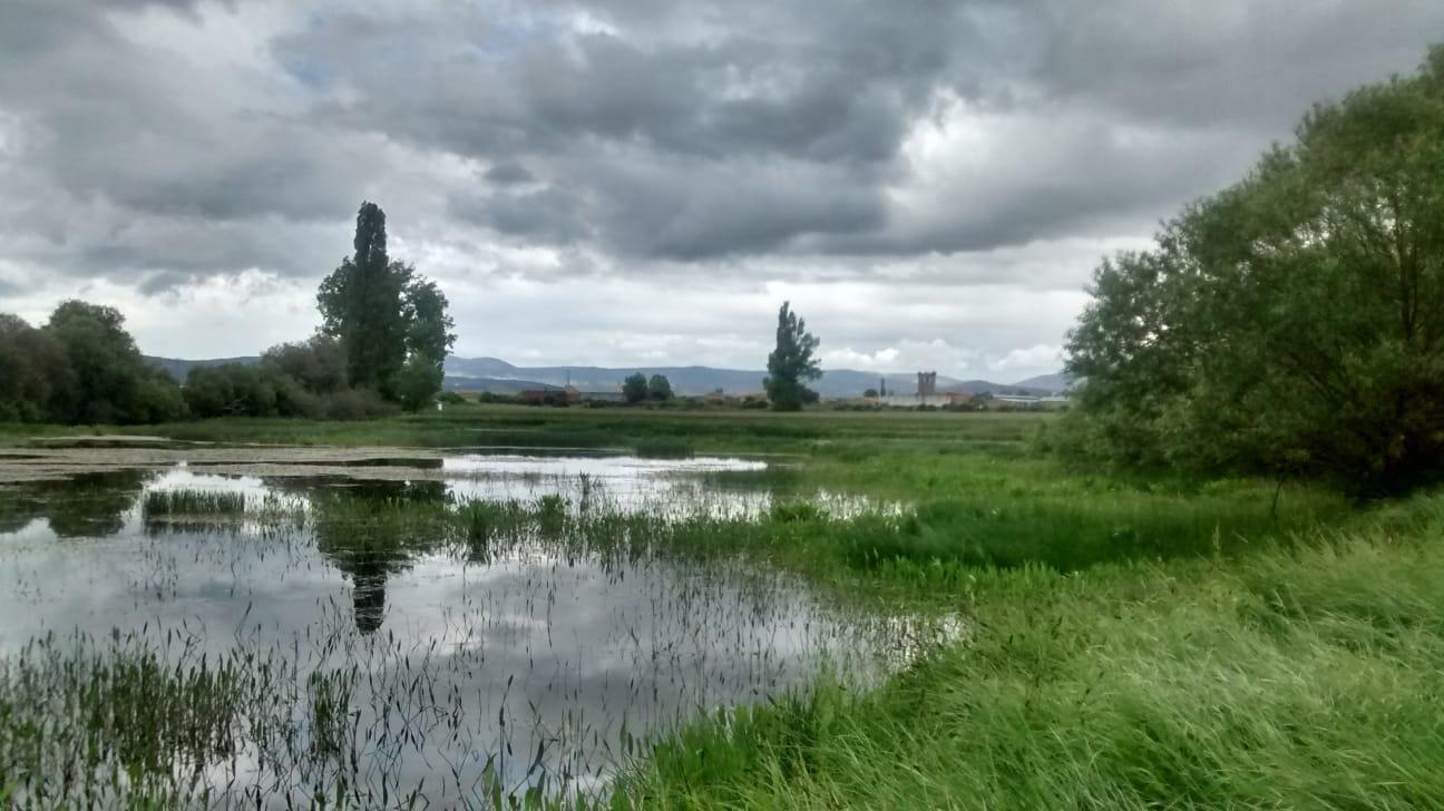 Días nubosos en Los Tejeros