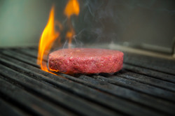 Business Development / Co-Gründer: PLANTY-OF-MEAT - plant-based burger patty