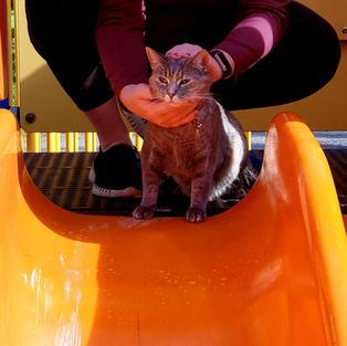 Grace on the slide.jpeg