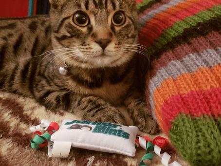 Pavel loves his Junior mints!