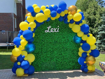 Blue and Yellow Full Organic Arch.jpg