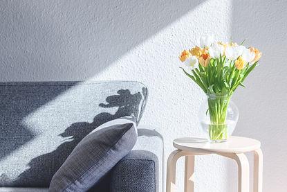 sunlight-and-tulips-TSNE3YY.jpg