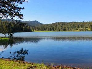 Thorn Creek Oregon