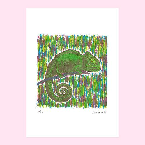 Chameleon Screen Print