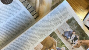 NZ Herald Canvas Magazine Story Published April 2021