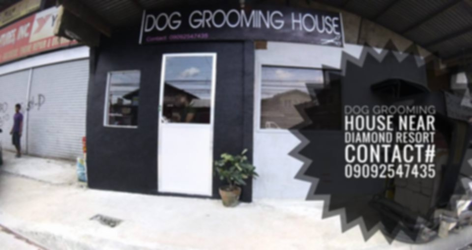 Dog Grooming House Image.jpg