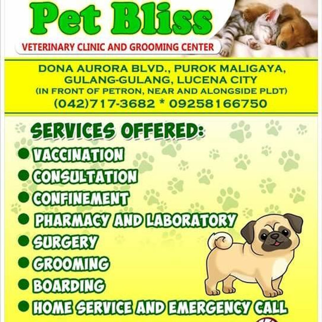 Lucena Pet Bliss Image.jpg