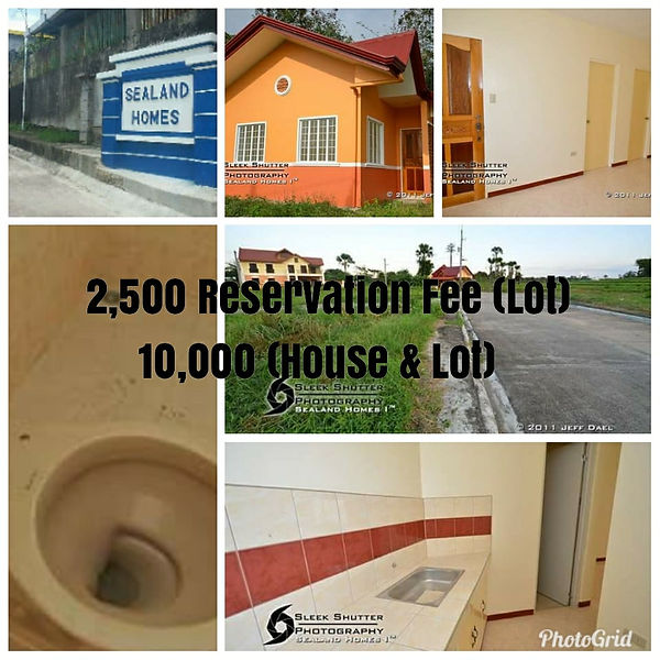 Sealand Realty Coonstruction and Develop