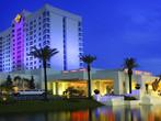 Hard Rock - Tampa