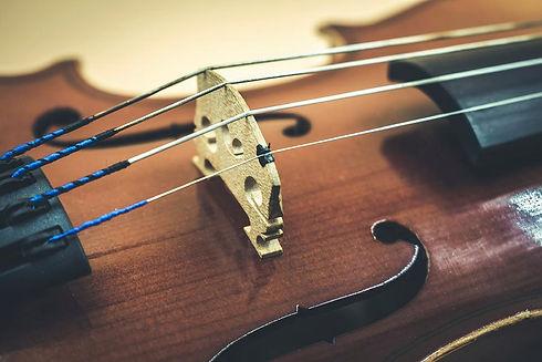 violin-closeup-danielle-christine-white.