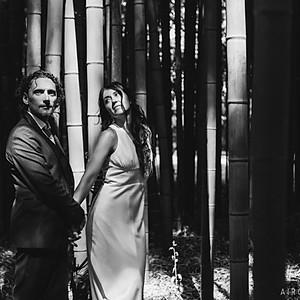 Elena e Ludovico