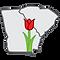 CSRA Parkinson two state tulip image squ