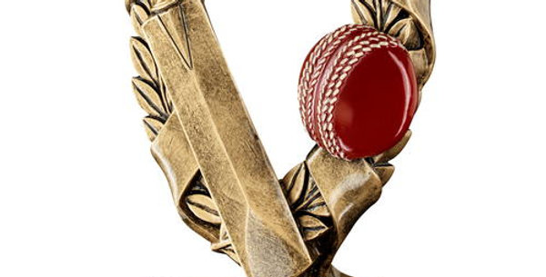 CRICKET 3 STAR WREATH AWARD TROPHY