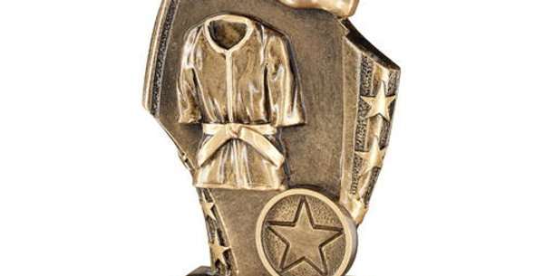 BRZ/GOLD MARTIAL ARTS CURVED PLAQUE TROPHY