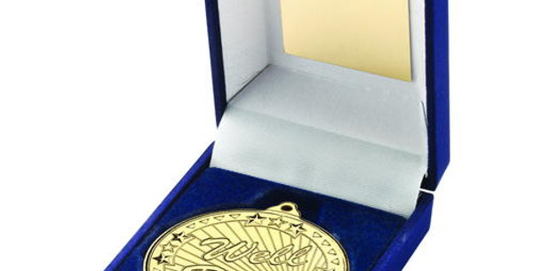 BLUE BOX AND GOLD WELL DONE MEDAL
