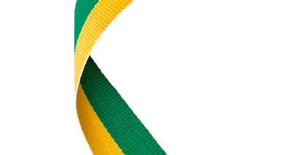 MEDAL RIBBON GREEN/YELLOW - 30 X 0.875in