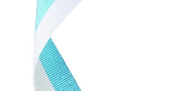 MEDAL RIBBON SKY BLUE/WHITE - 30 X 0.875in