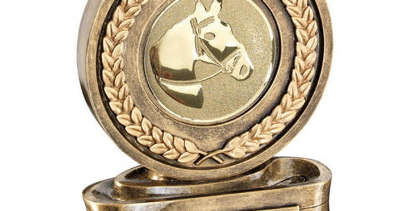 BRZ/GOLD MEDAL AND RIBBON WITH HORSEHEAD INSERT TROPHY - 5in