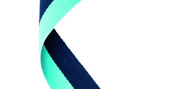 MEDAL RIBBON NAVY BLUE/SKY BLUE - 30 X 0.875in