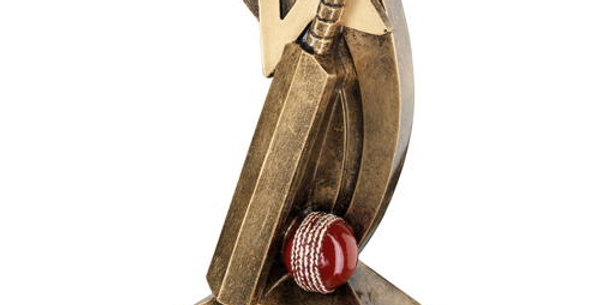 CRICKET BAT/BALL WITH SHOOTING STAR TROPHY