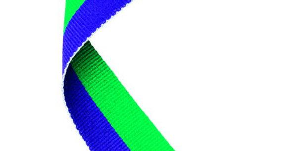 MEDAL RIBBON PURPLE/GREEN - 30 X 0.875in