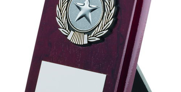 ROSEWOOD PLAQUE AND SILVER TRIM TROPHY